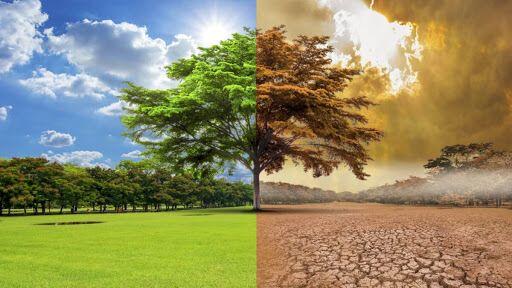 Измемения климата уже необратимы.