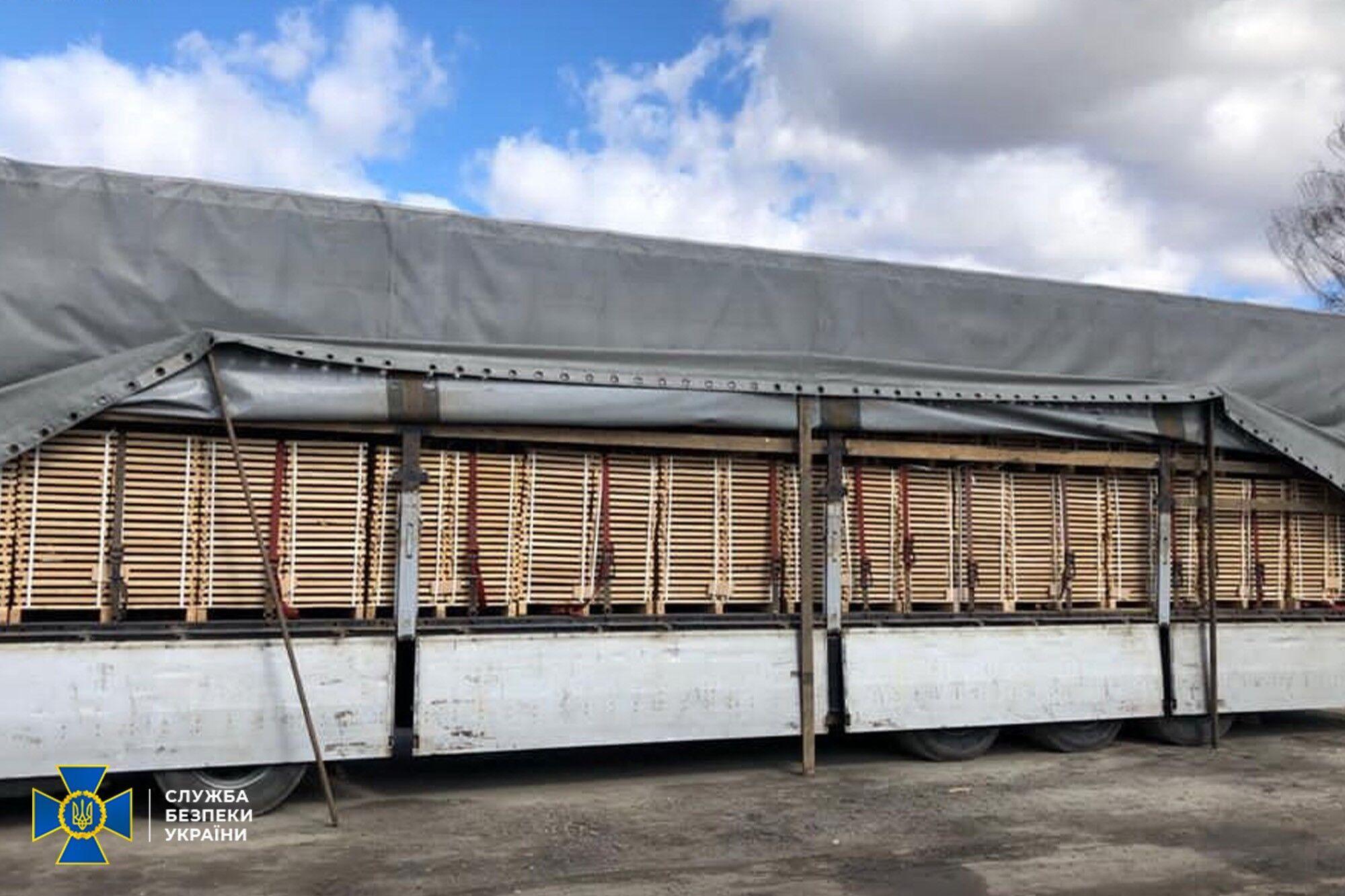 СБУ розкрила масштабні схеми незаконної вирубки і продажу деревини