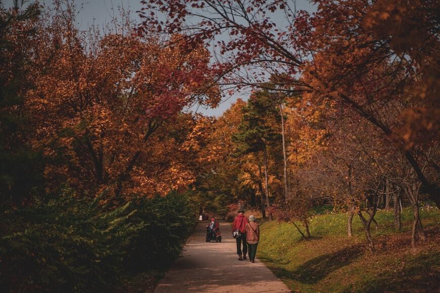 Уже в четвер, 14 жовтня, прийде період чергового потепління.