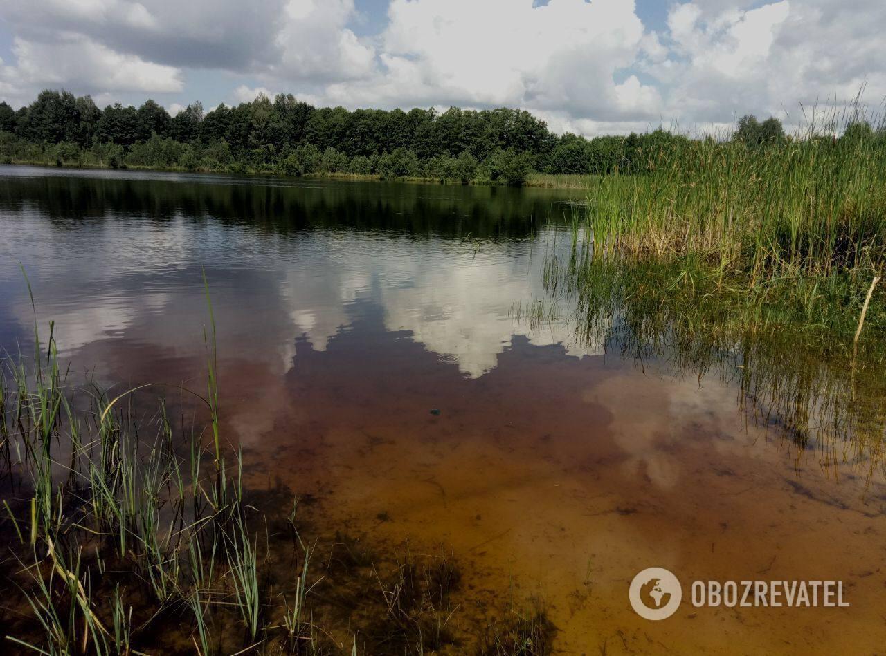 Шацкие озера идеально подходят для семейного отдыха.