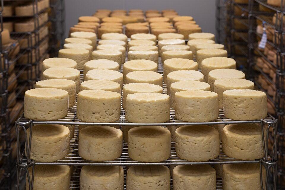 Как дома правильно приготовить сыр