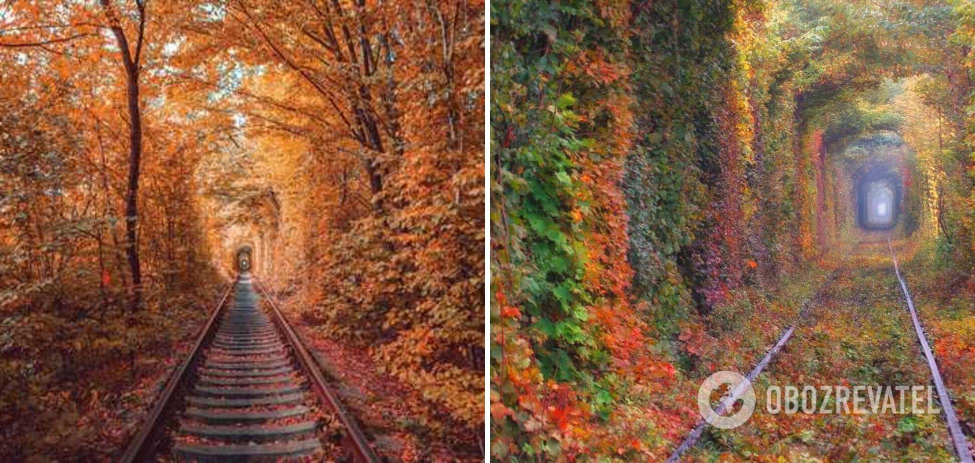 Все влюбленные приезжают в тоннель любви в Ровенскую область.