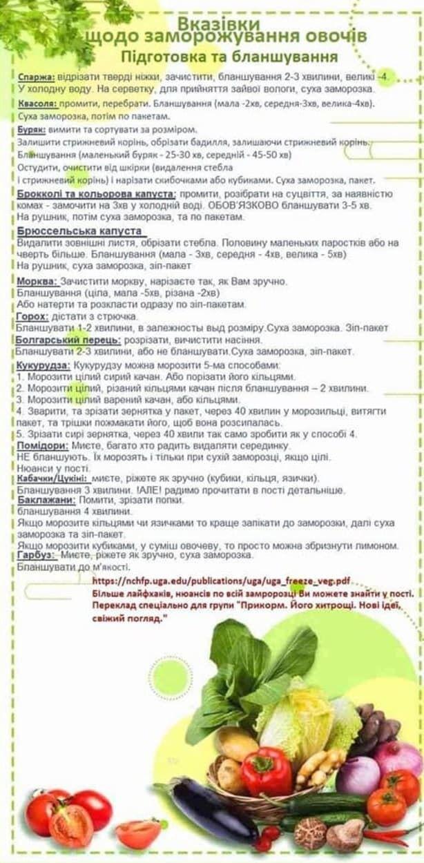 Правила подготовки и бланширования овощей перед заморозкой