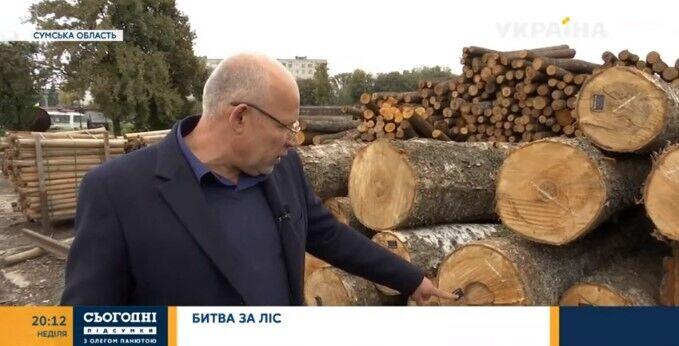 Отмена моратория приведет к закрытию украинских деревообрабатывающих предприятий