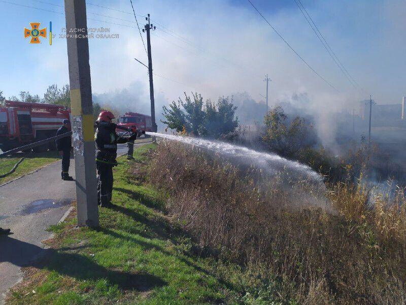 Спасатели борются с огнем