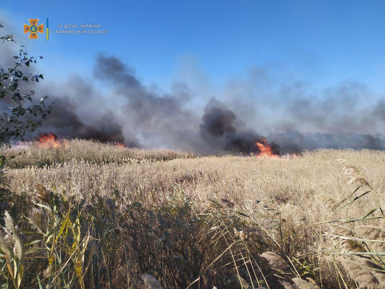 Спасатели тушили пожар в Балаклее