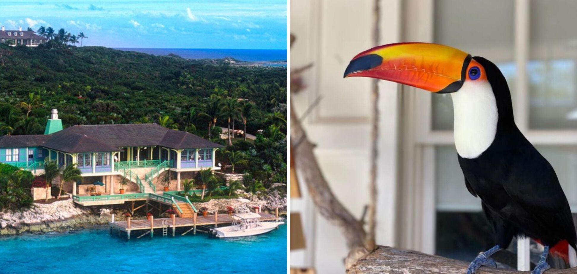 Забронювати в Musha Cay окремо одну віллу неможливо. Тільки цілий острів.