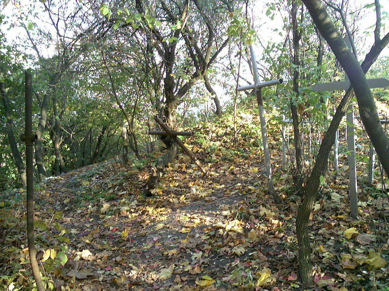 Среди зарослей можно увидеть старые могилы.