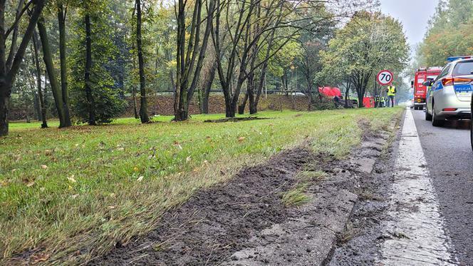 Причини смертельної аварії з українцями встановлюють польські поліцейські