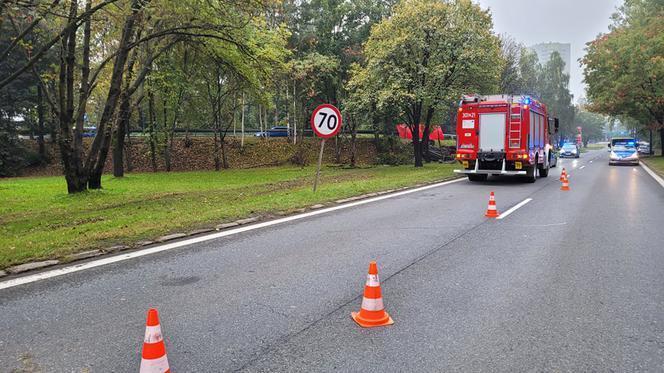Тіла загиблих із понівеченого авто діставали рятувальники