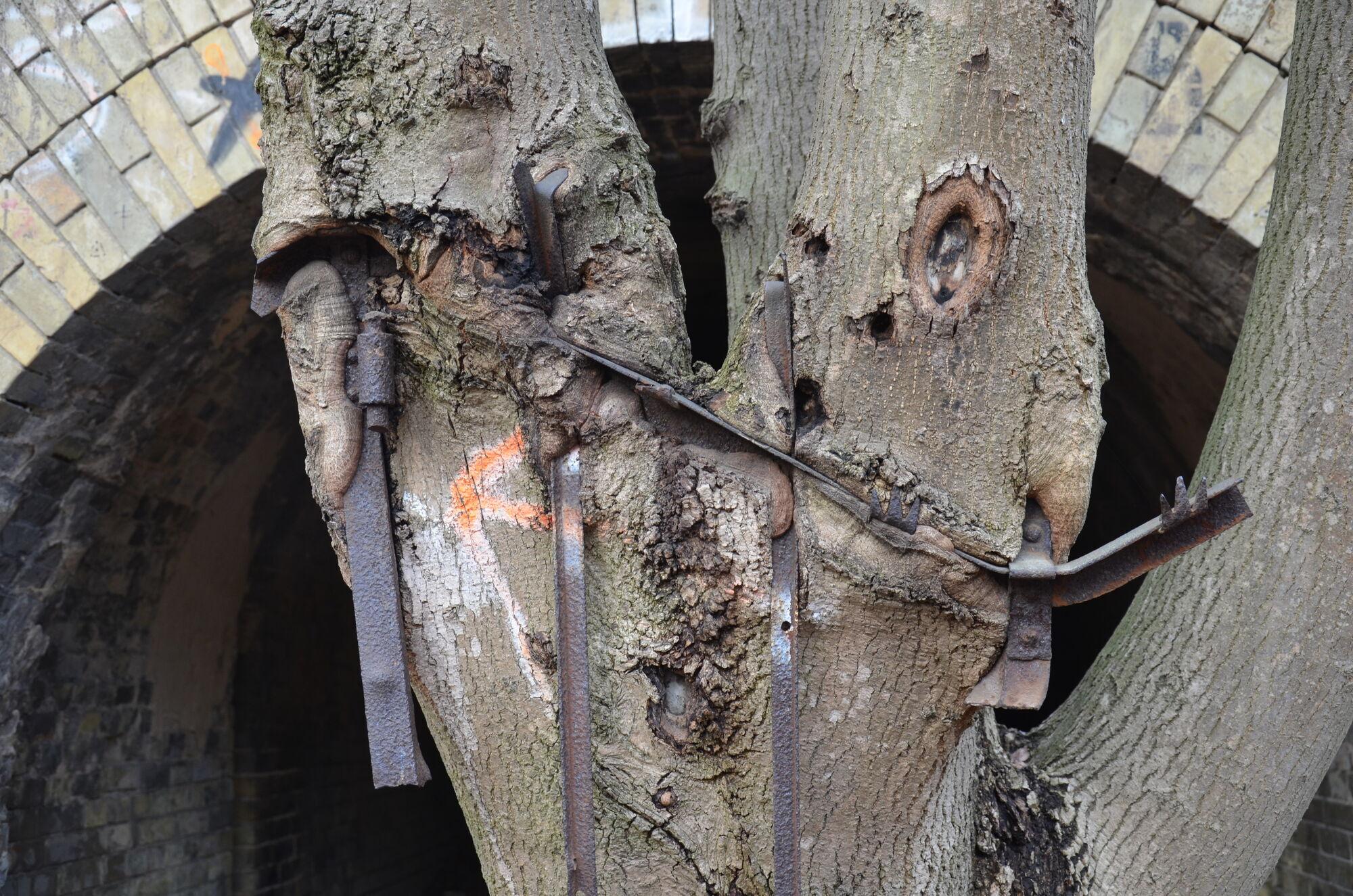 Остатки прошлого, которые уже вросли в деревья.