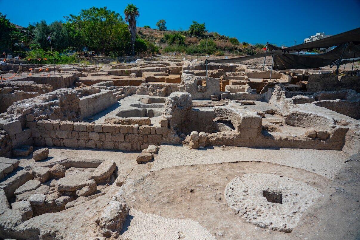 На месте находки также обнаружили несколько экземпляров гончарной посуды и кости животных.