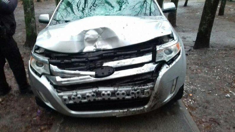 ДТП совершил водитель Ford Edge.