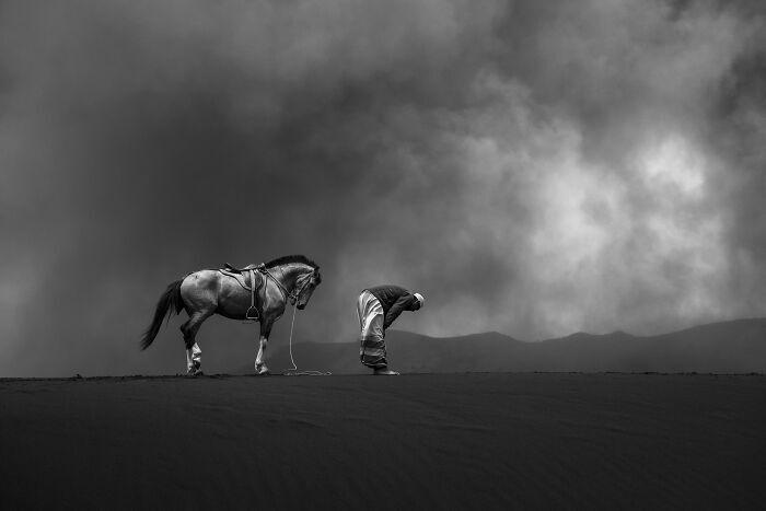 Переможці конкурсу Tokyo International Foto Awards 2020