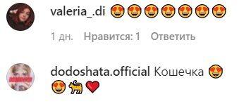 Комментарии пользователей сети в Instagram.