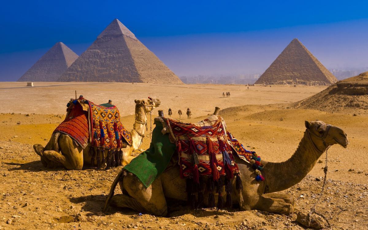 Египет– топ-страна для отдыха летом большими компаниями и семьей.