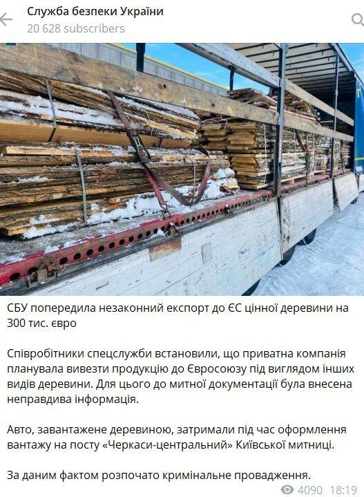 СБУ заблокировала вывоз ценной древесины из Украины.