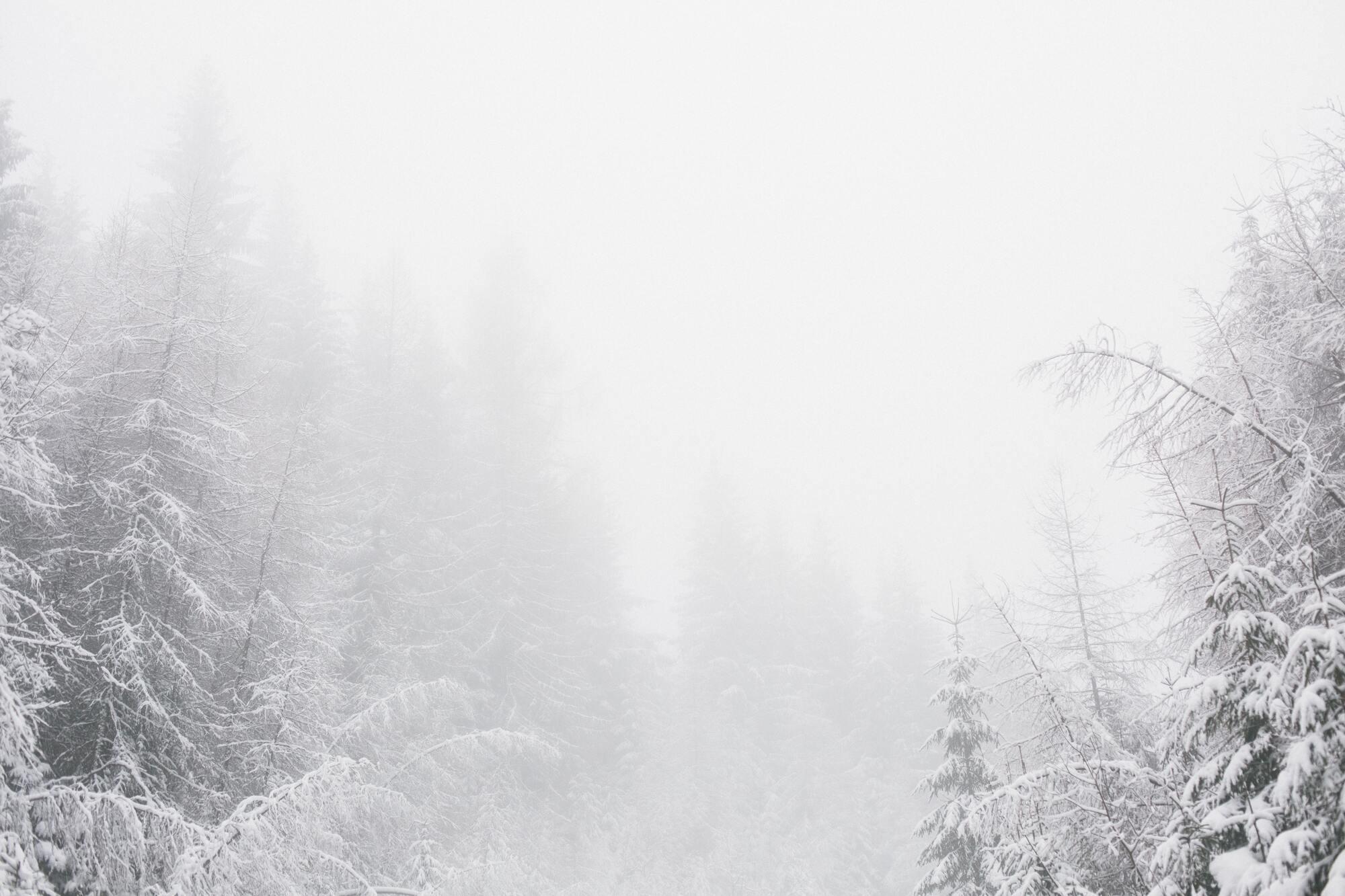 23 лютого морози починали відступати