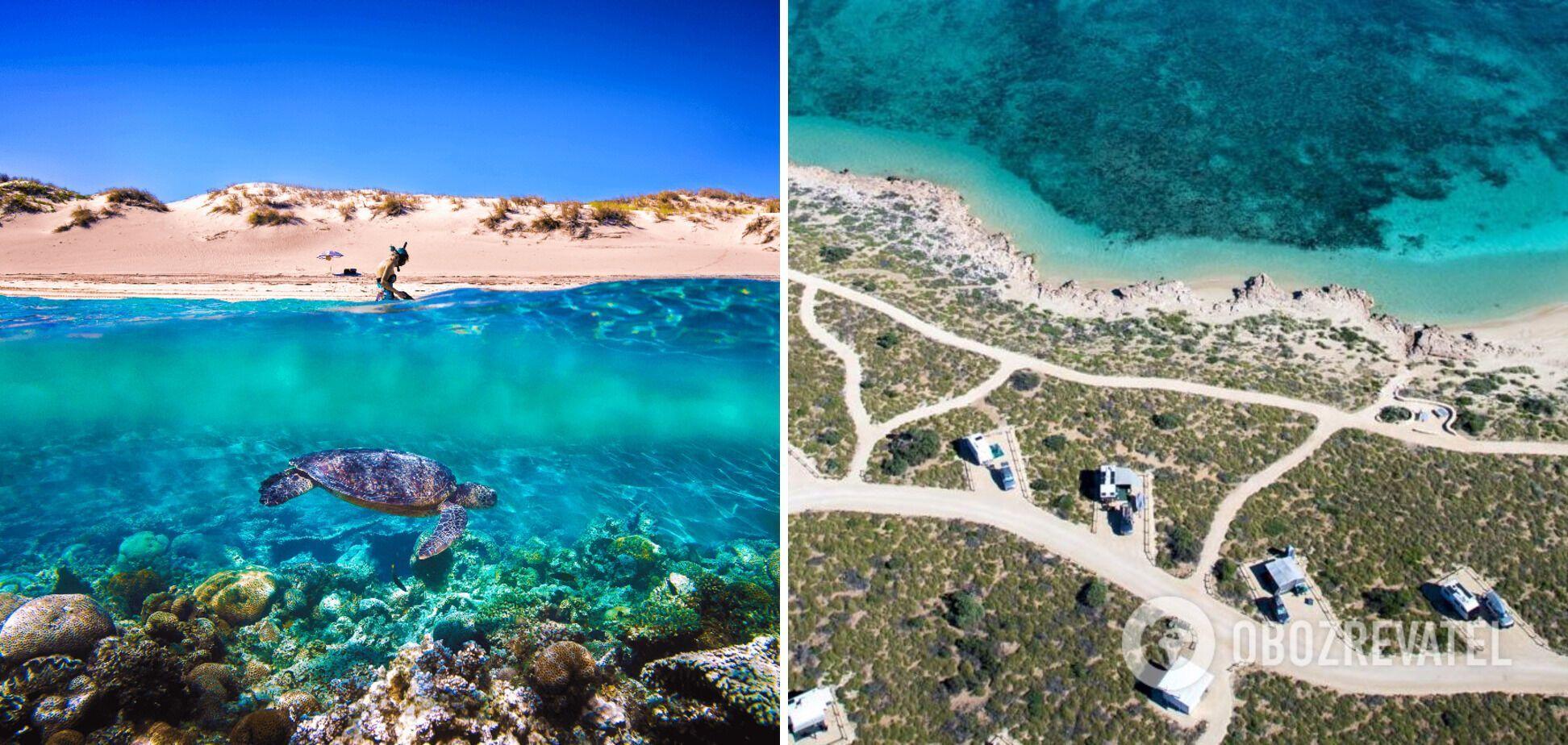 Бірюзовий залив в Австралії має різноманітний підводний світ