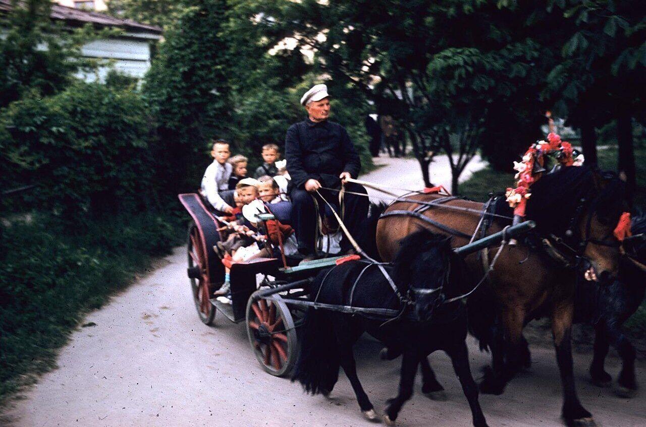 Дети катаются в конном экипаже