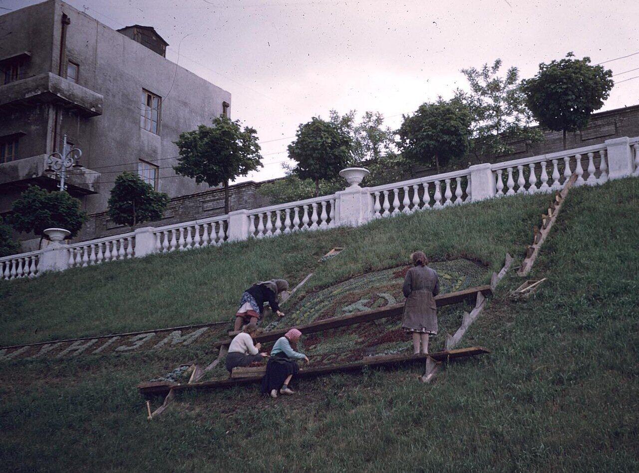 Женщины украшают газон