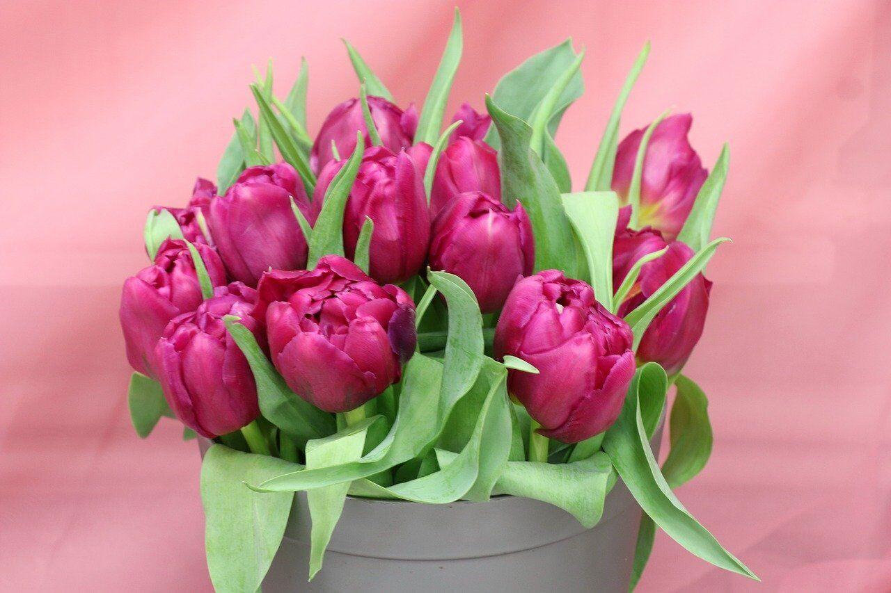 Будь-який подарунок до 8 Березня обов'язково потрібно доповнити букетом квітів