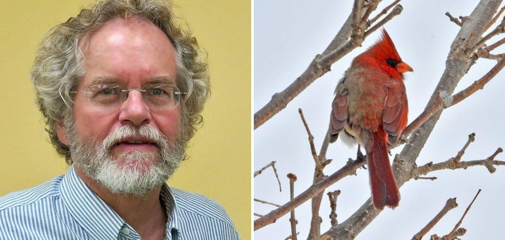 Незвичного птаха сфотографував орнітолог Джеймі Гілл