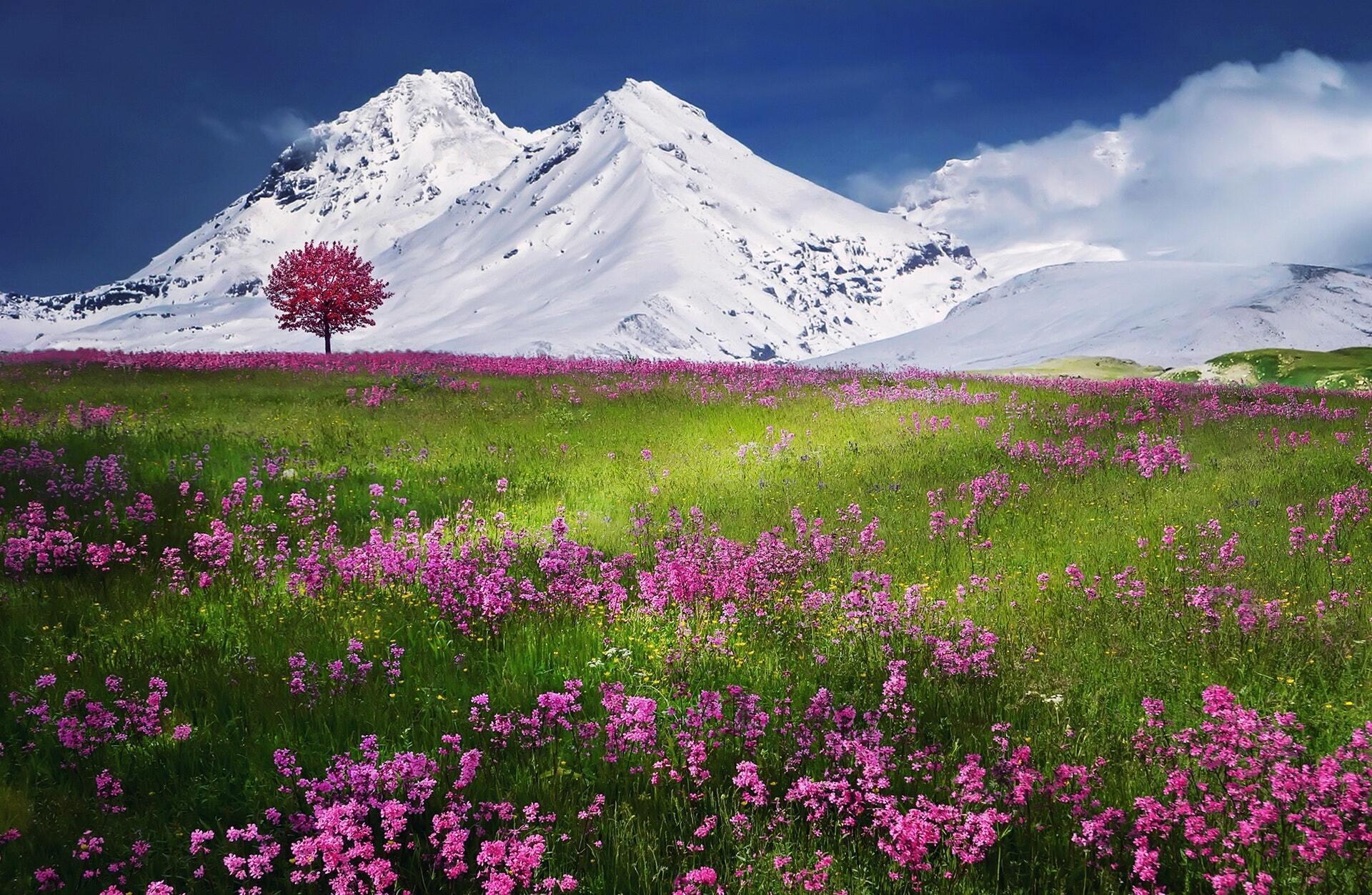 В понедельник многие страны отмечают Праздник прихода весны