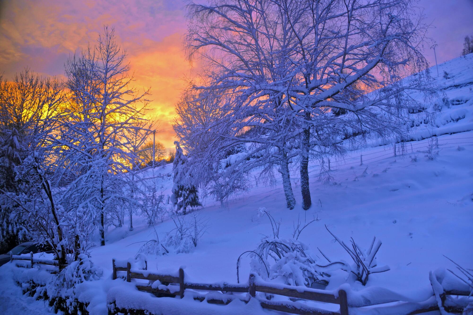 4 лютого випало багато снігу – буде хороший урожай пшениці і вівса