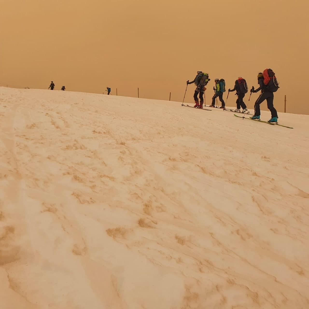 Снег в горах Франции стал желтым