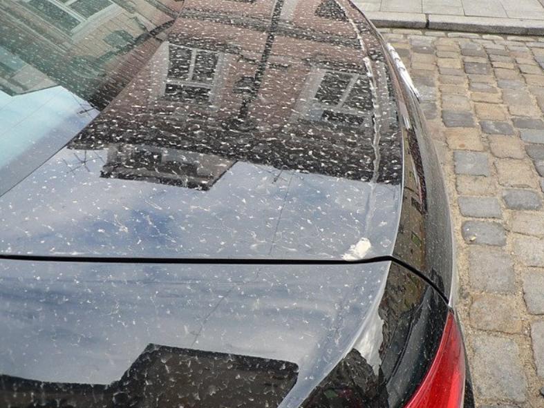 Цветной снег на автомобилях