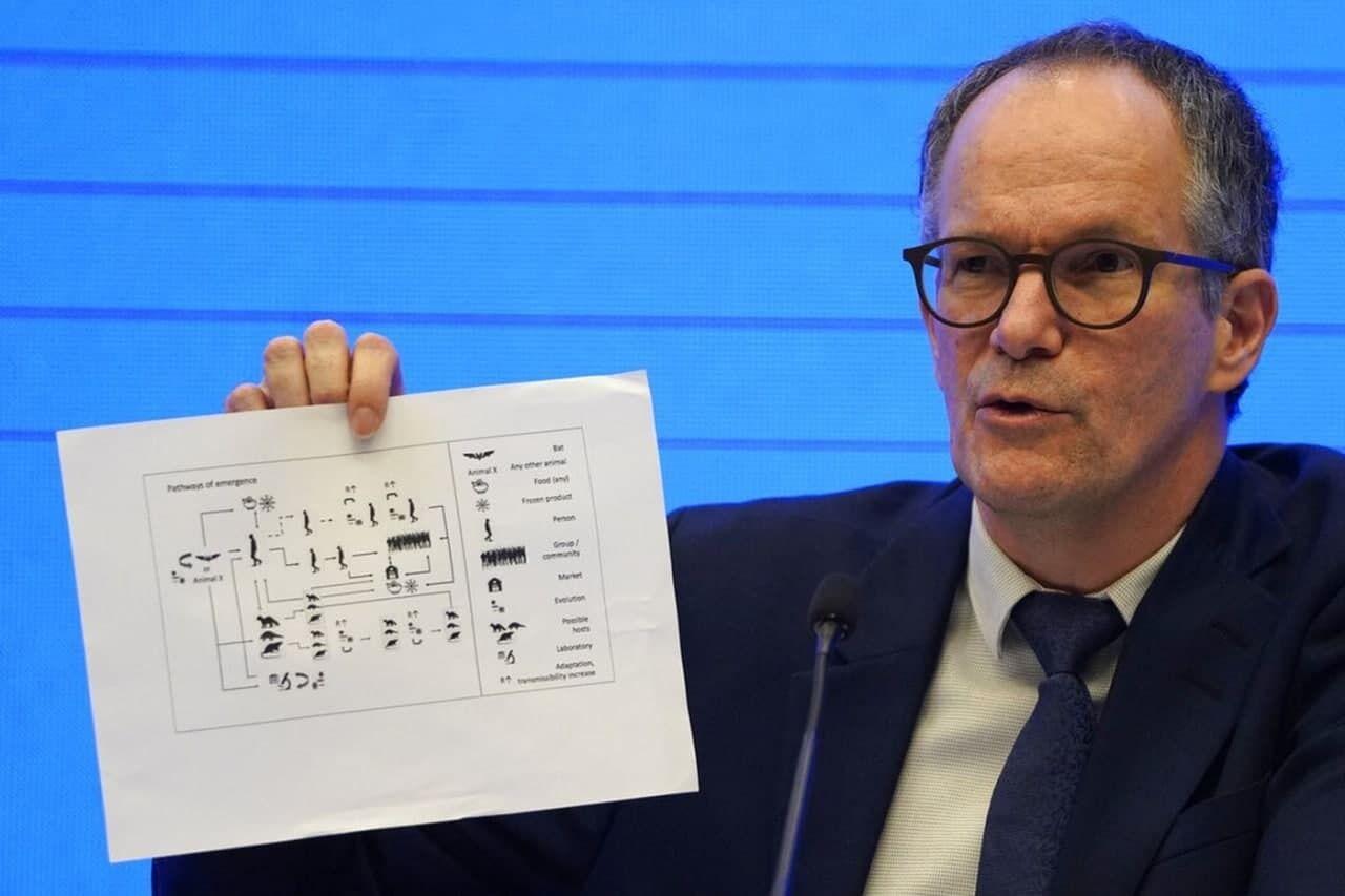 Питер Бен Эмбарек показал схему с четырьмя теориями о том, как COVID-19 стал передаваться к людям