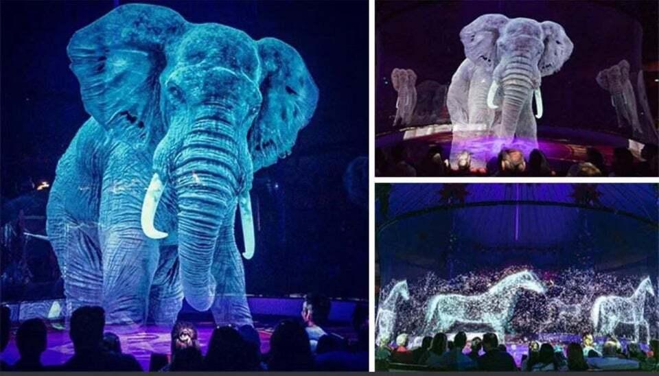 Немецкий цирк больше не демонстрирует живых животных.