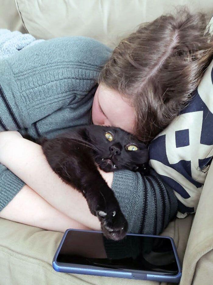 Котик не любит нежные объятия.