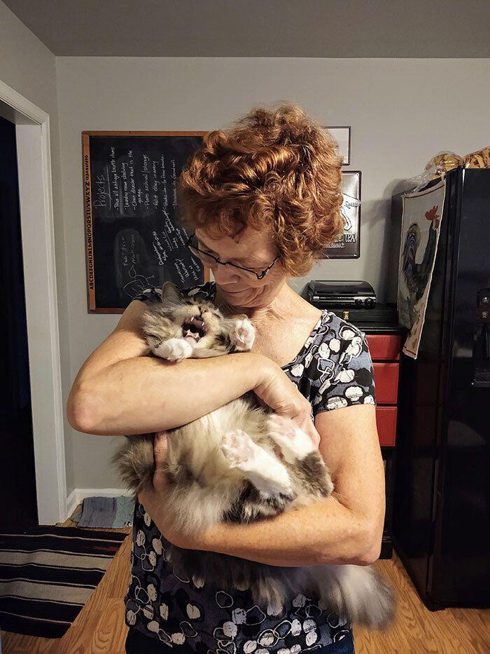 Котику вистачило обіймів бабусі.