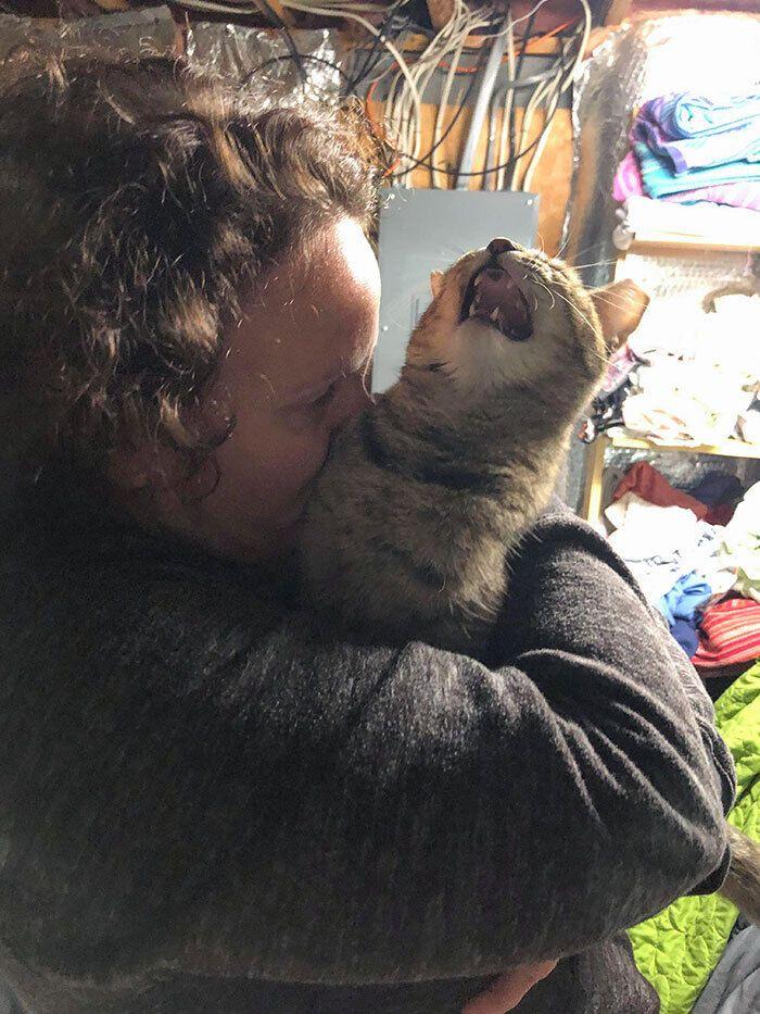 Кот не ценит подаренных поцелуев.