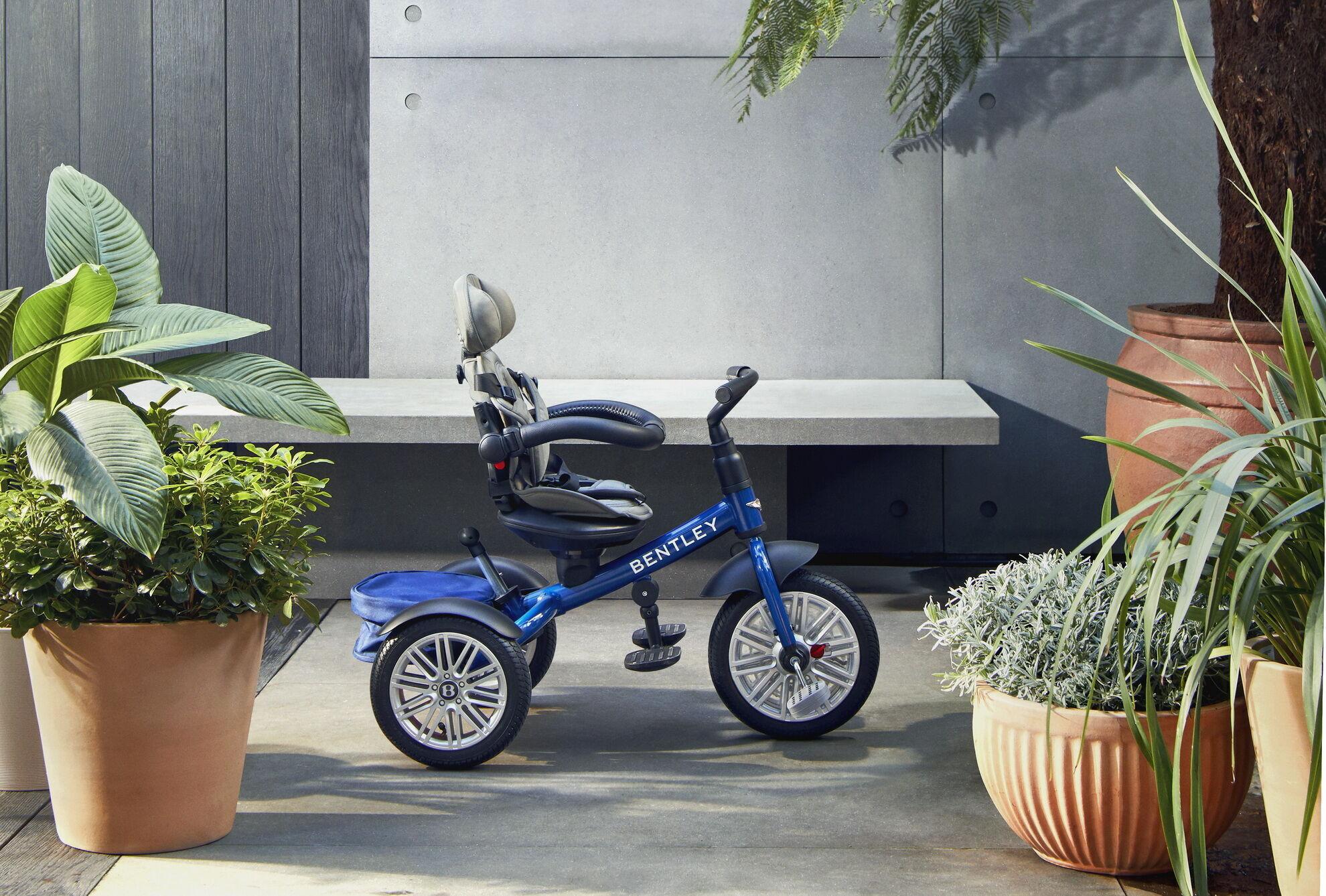 Заказать трицикл можно в любом из богатой палитры цветов