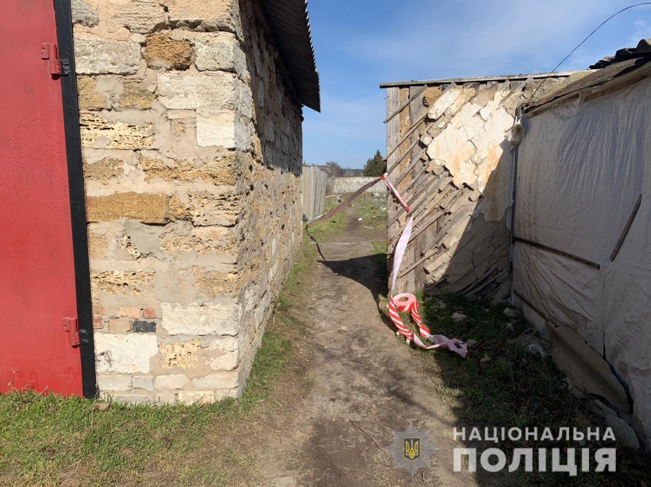 Мертвою дитину виявили під час повторного огляду території села