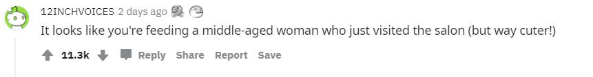 В сети пошутили по поводу волос девочки
