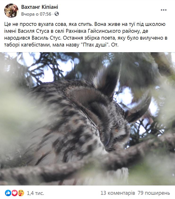 В родном селе Стуса под школой его имени поселилась сова