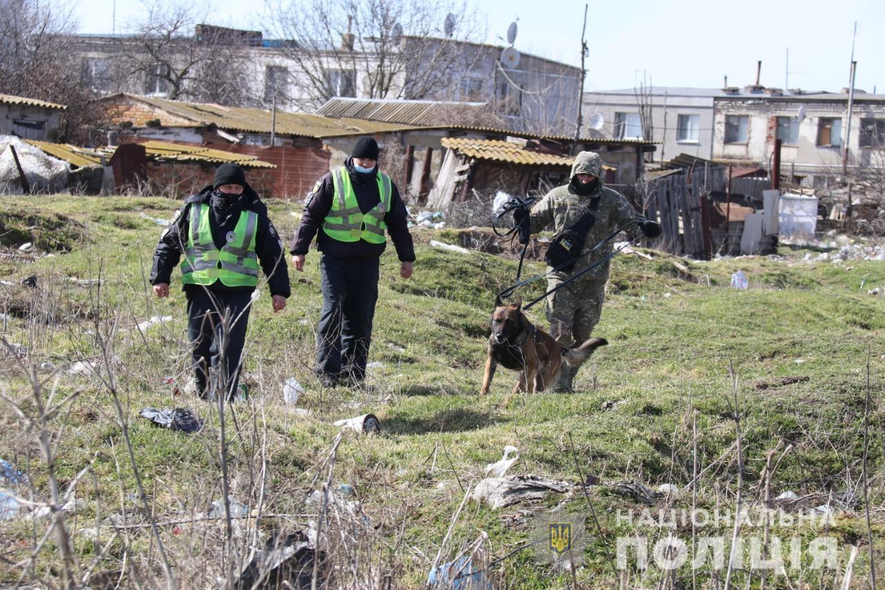 Поліція пустила собак по сліду