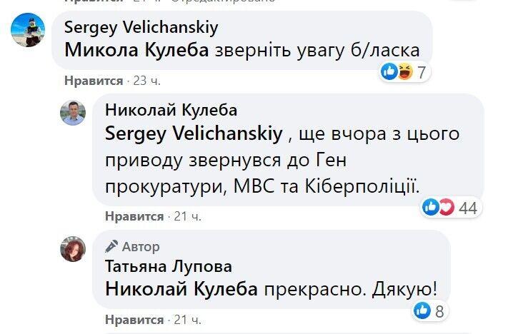 Комментарий Николая Кулебы