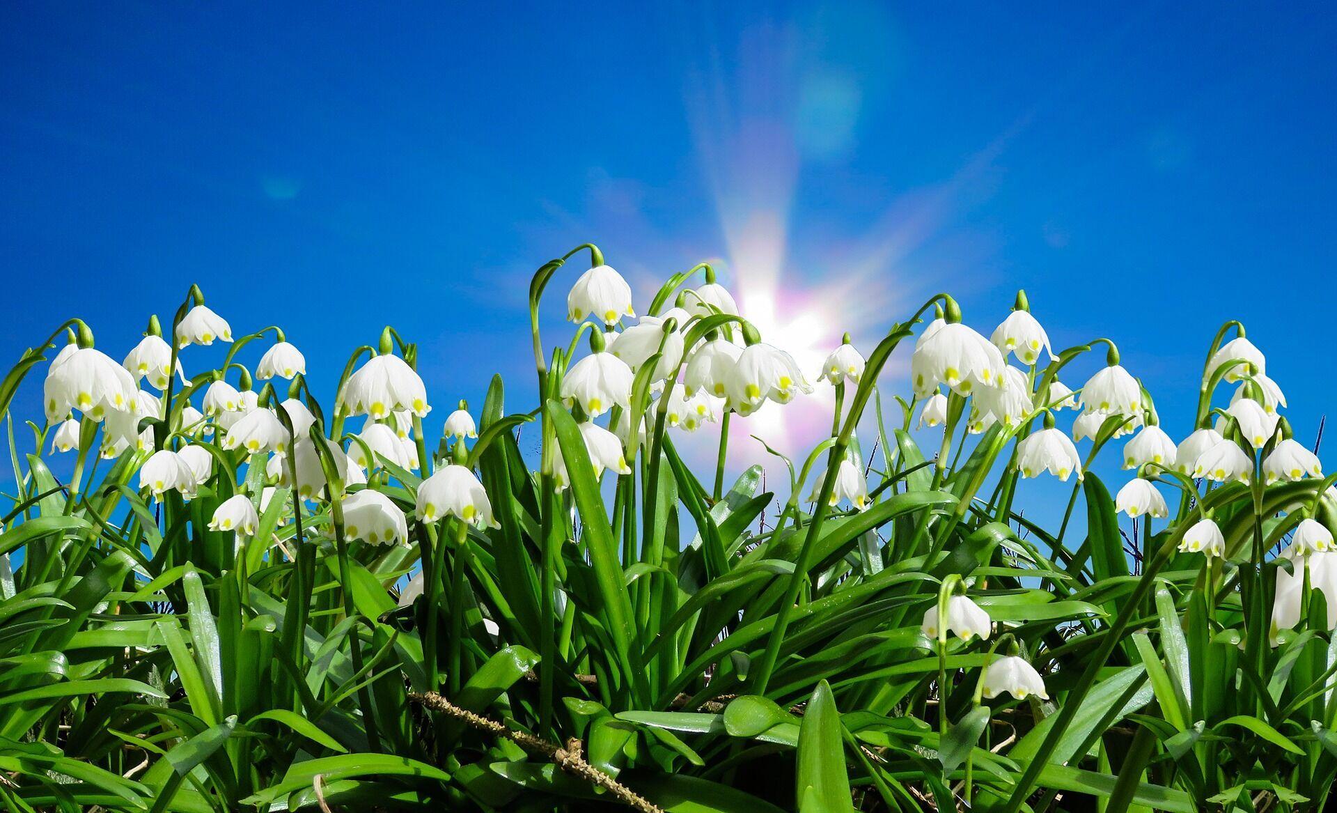 Считается, что в день весеннего равноденствия нужно избавиться от всего лишнего