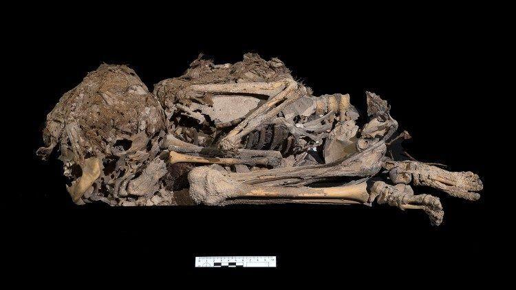 Скелет ребенка