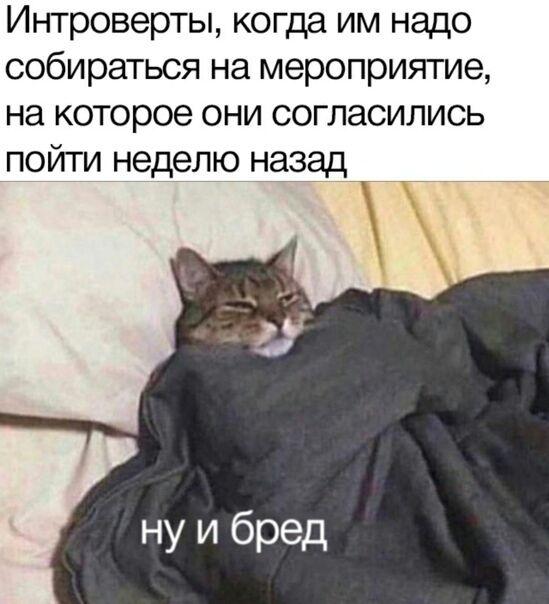 Мем про інтровертів