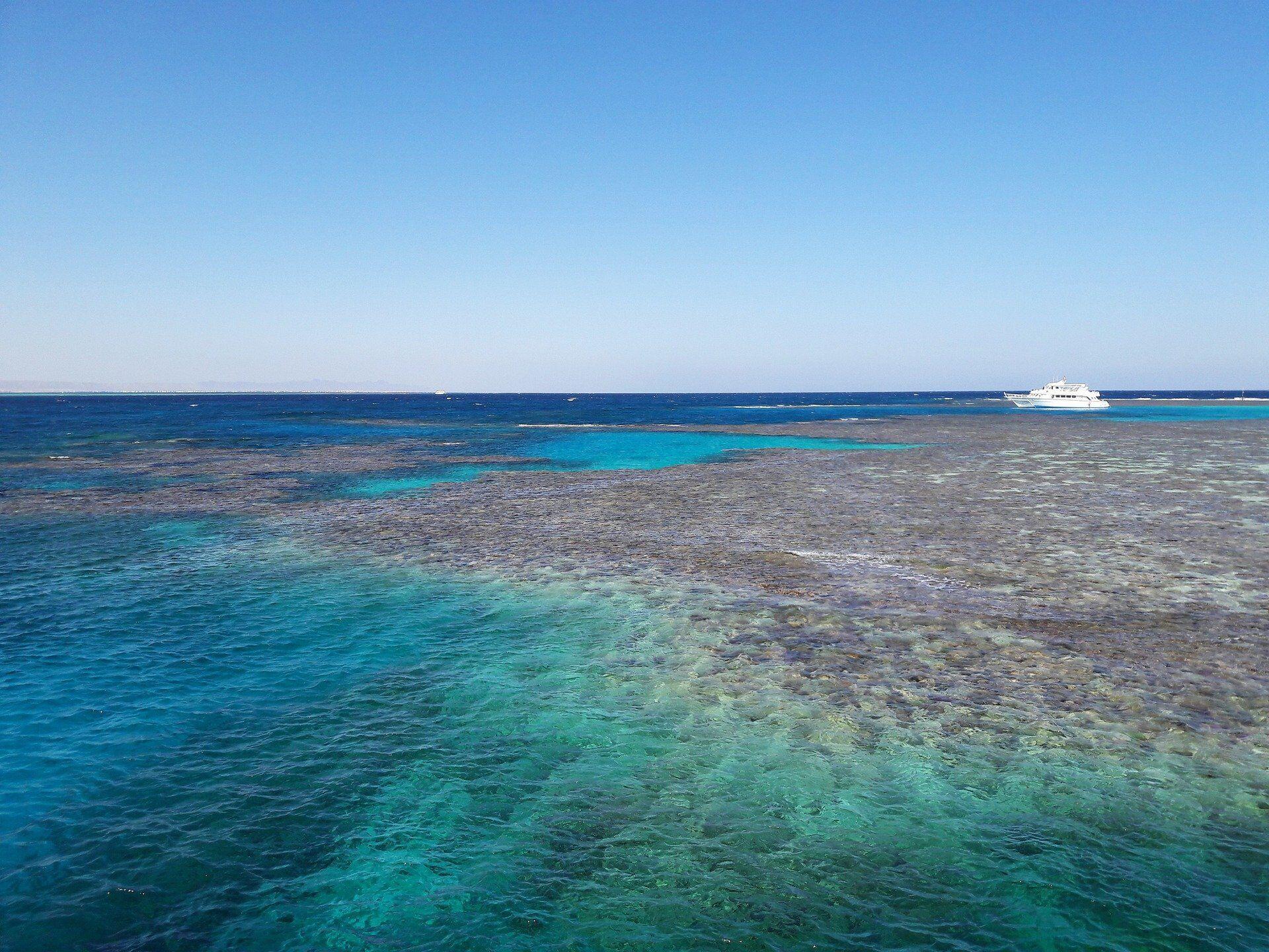 Побачити коралові рифи – це те, заради чого з'їжджаються до Червоного моря мільйони туристів