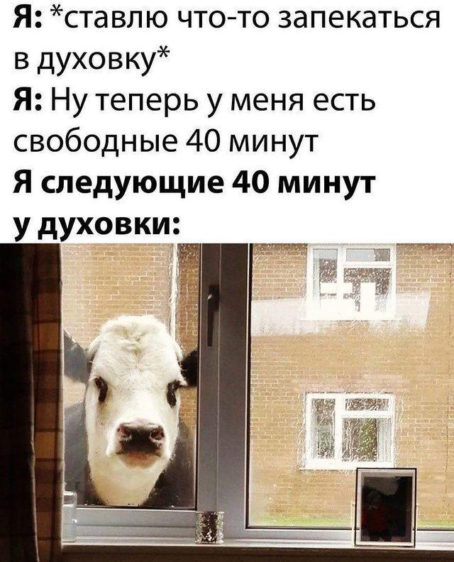 Мем о кулинарии