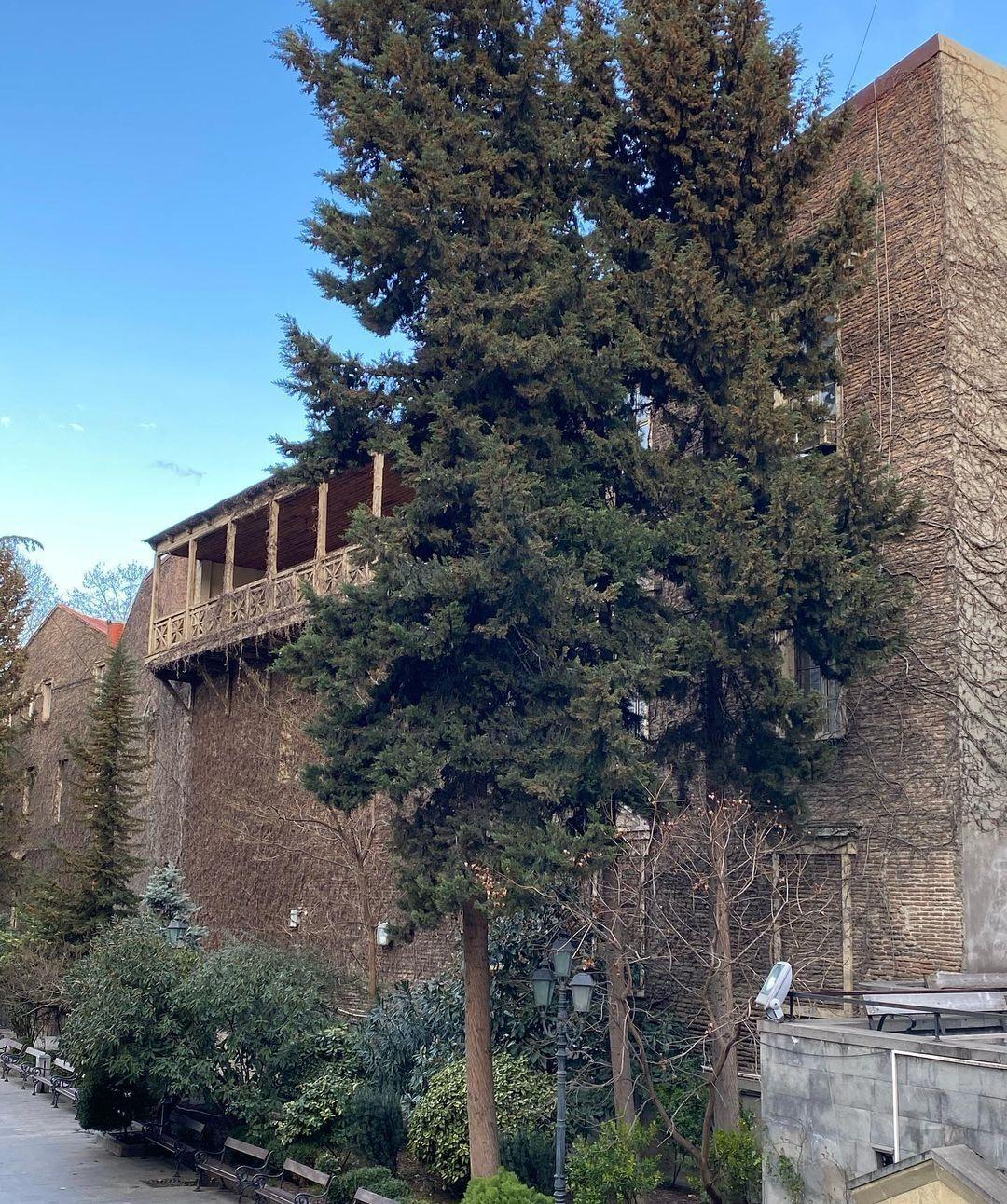 Осадчая провела экскурсию по Тбилиси