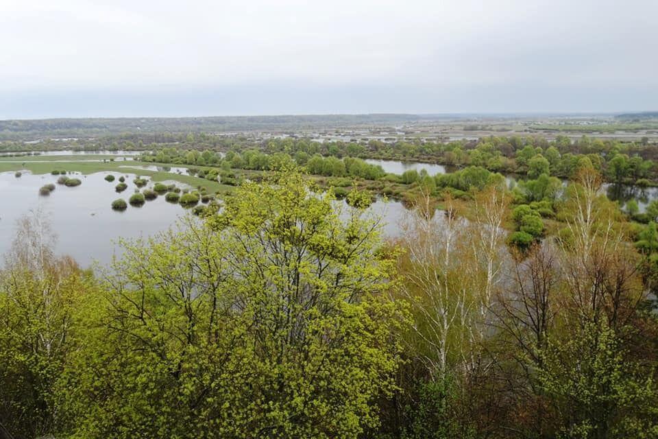 В этом году разлив Десны пройдет в апреле и в начале мая