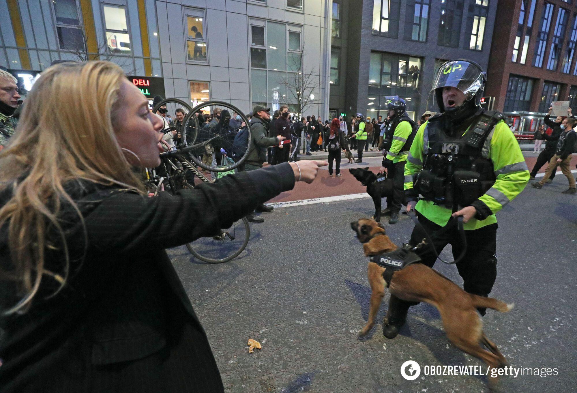 Полиция вывела собак.